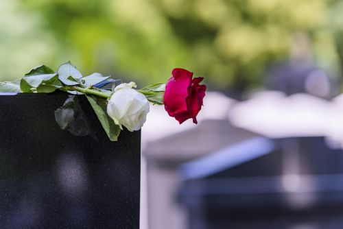 Flower On A Grave In A Cemetery
